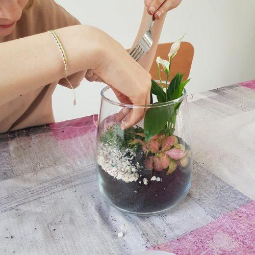 lunaterrana-terrarium-atelier-DIY-9